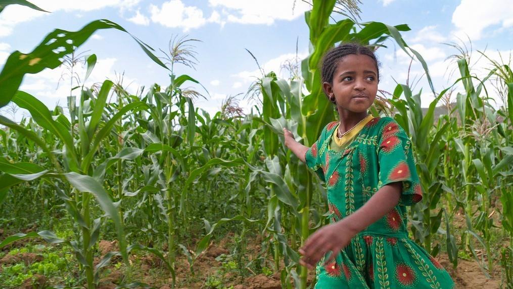 Ethiopia: A Development Story